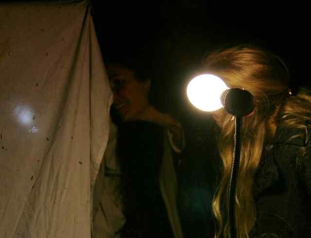 20100724_NVN_16_UV-lamp