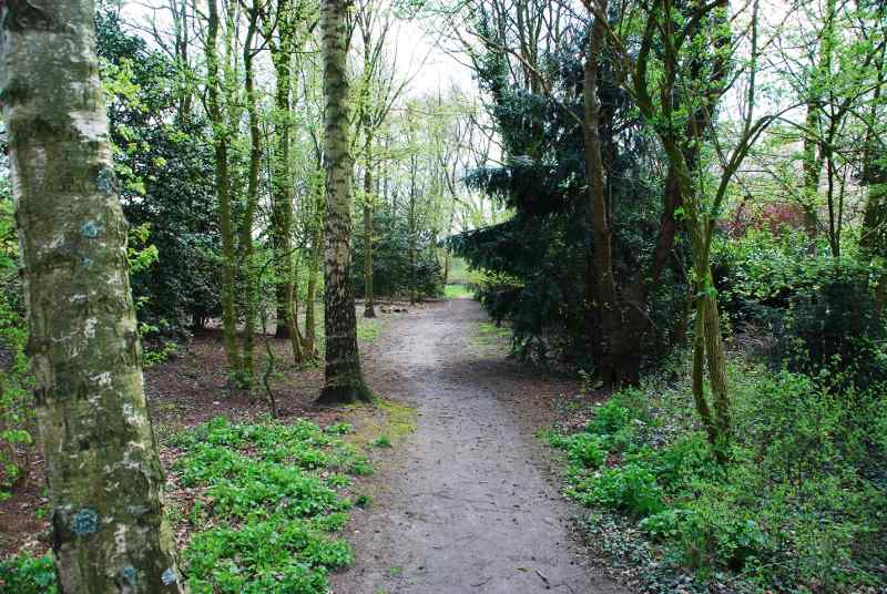 Natuurpark_Pad_Eikenwal_Grasland
