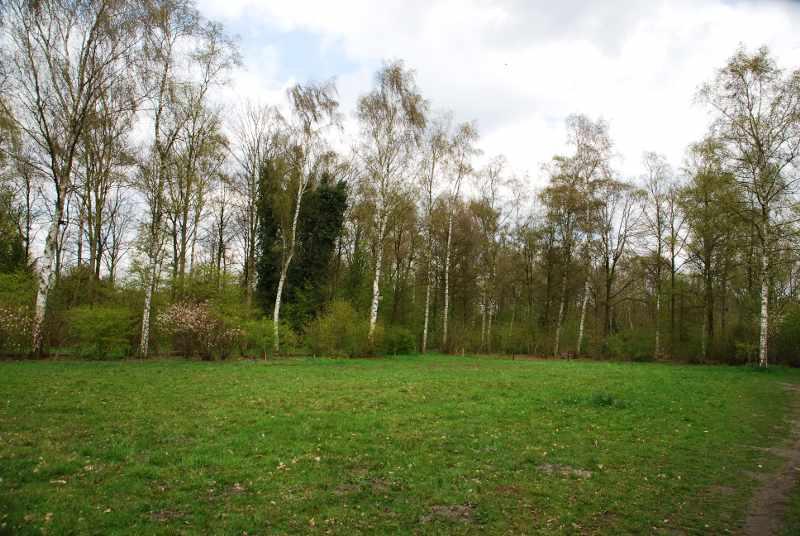 Natuurpark_Veld_Bloemrijk_Grasland