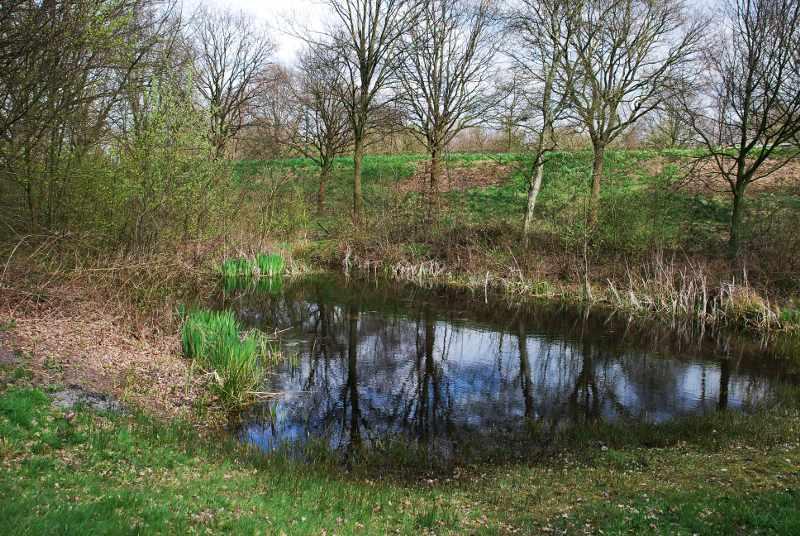 Natuurpark_Waterpoel
